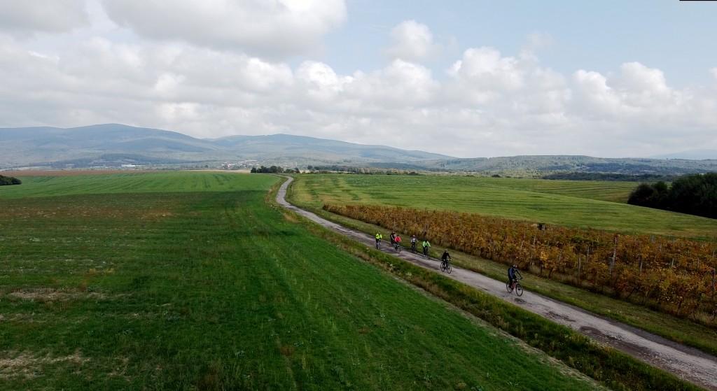 Prejazd cez vinicu za Koromľou